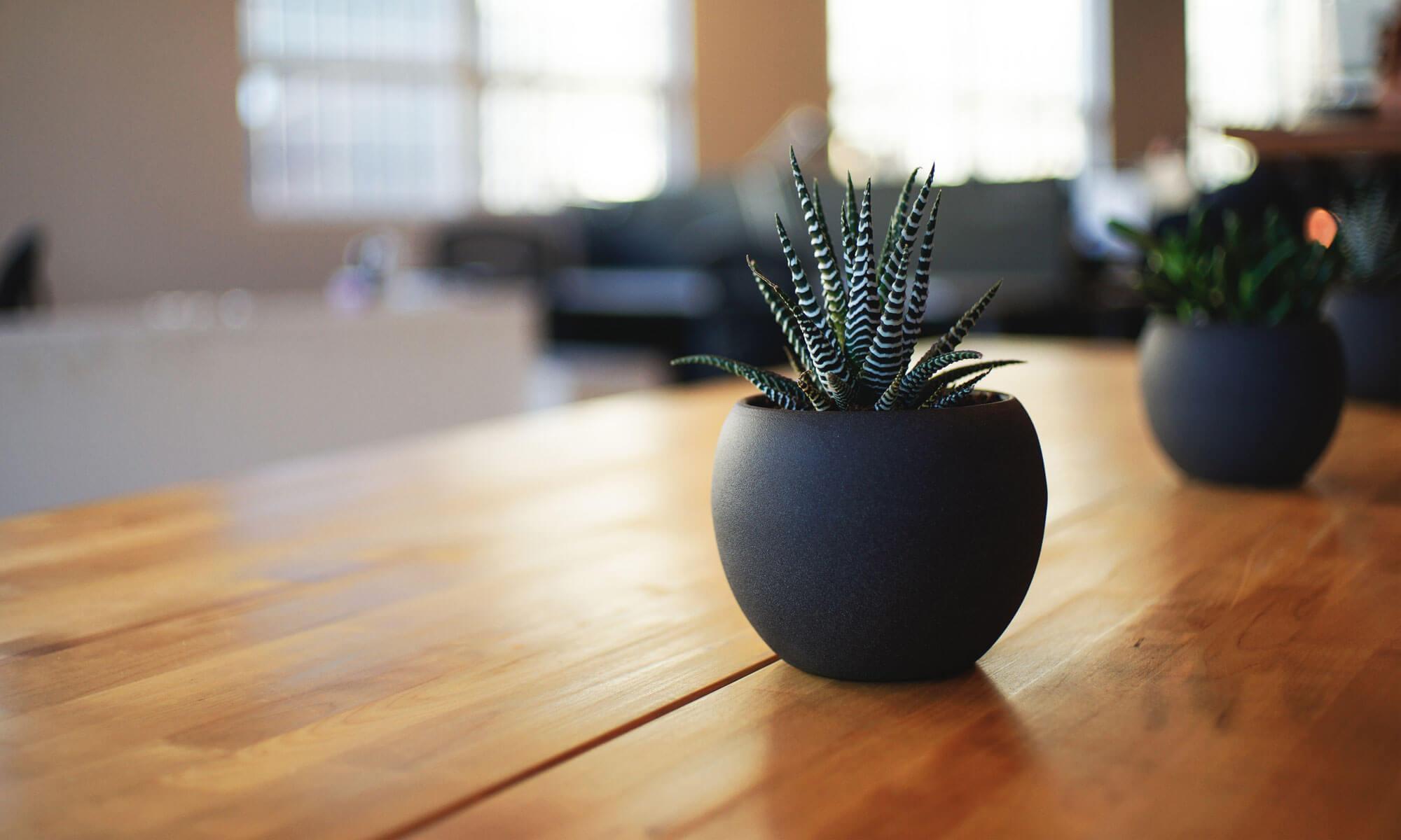 Valoriser vos biens immobiliers avec la visite virtuelle